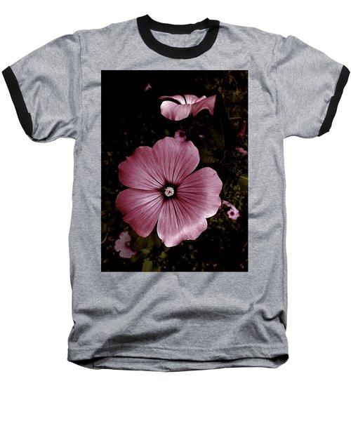 Evening Rose Mallow Baseball T-Shirt by Danielle R T Haney