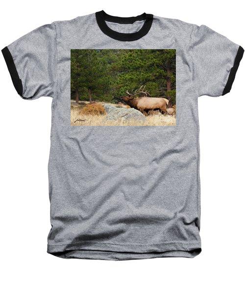 Evening Song Baseball T-Shirt