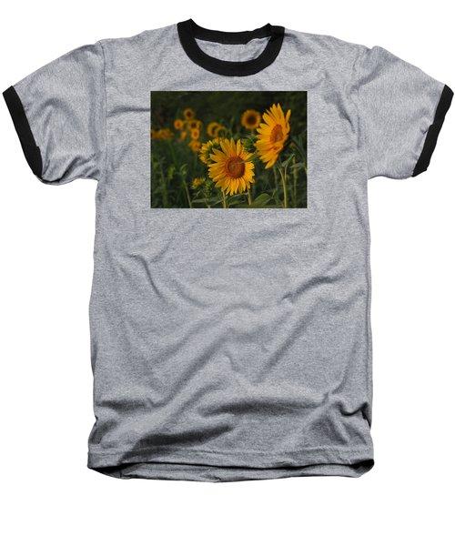 Evening Sunflowers Baseball T-Shirt