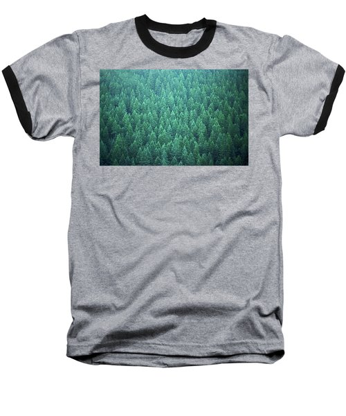 Baseball T-Shirt featuring the photograph Evergreen by Laurie Stewart