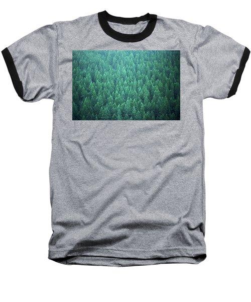 Evergreen Baseball T-Shirt