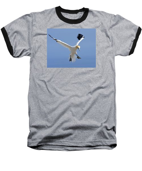 Expanding Surface Baseball T-Shirt by Tony Beck