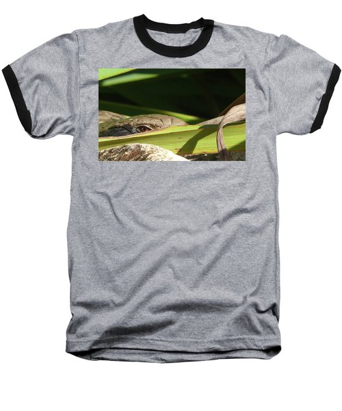Eye Contact Baseball T-Shirt by Evelyn Tambour