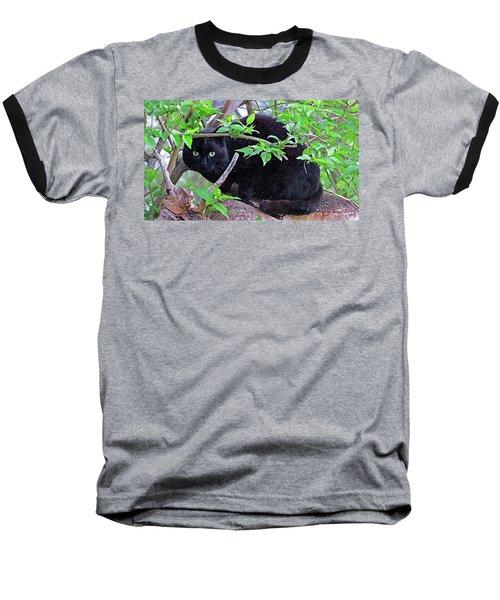 Eye Contact No.2 Baseball T-Shirt by Sandra Church