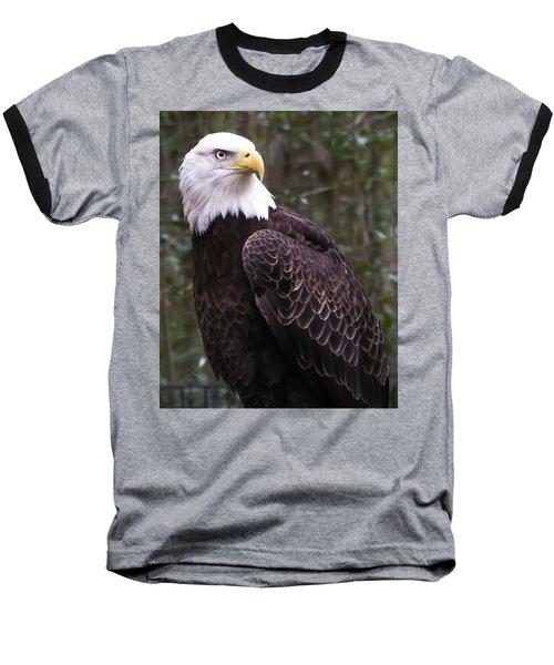 Eye Of The Eagle Baseball T-Shirt by Trish Tritz