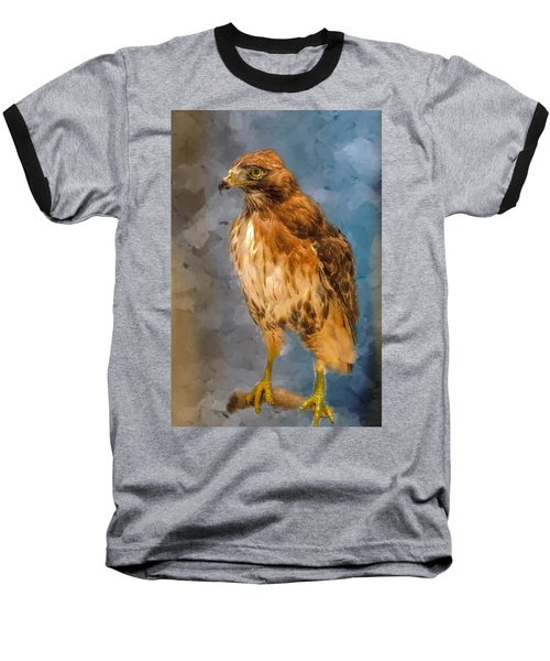 Eye Of The Hawk Baseball T-Shirt