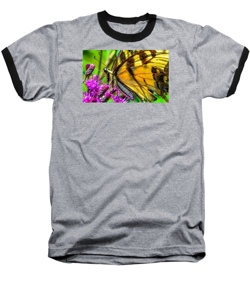 Eye Of The Tiger 3 Baseball T-Shirt by Brian Stevens