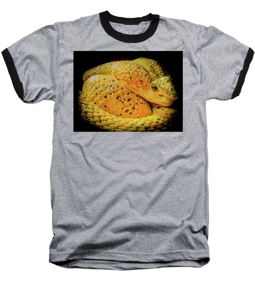 Baseball T-Shirt featuring the photograph Eyelash Viper by Karen Wiles