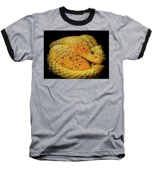 Eyelash Viper Baseball T-Shirt by Karen Wiles