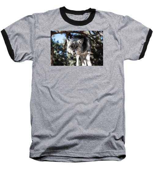 Eyes On The Prize Baseball T-Shirt