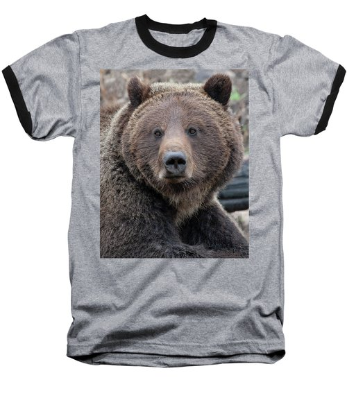 Face Of The Grizzly Baseball T-Shirt