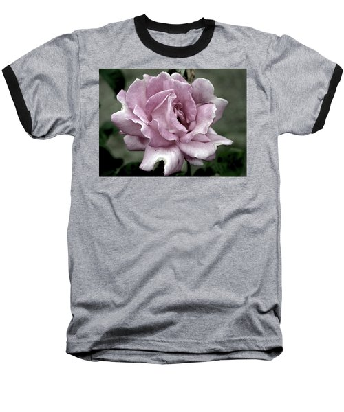 Faded Beauty Rose 0226 H_2 Baseball T-Shirt