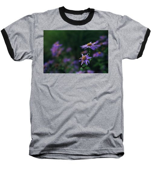 Fading Beauty Baseball T-Shirt