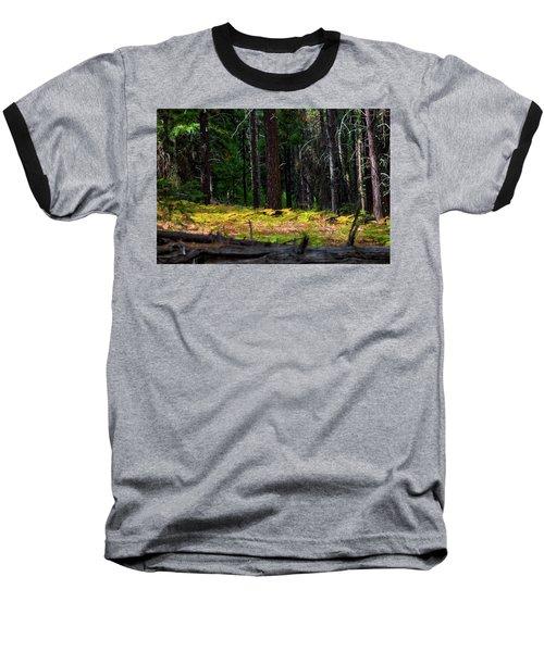 Cascade Mountain Range Fading Ferns Baseball T-Shirt