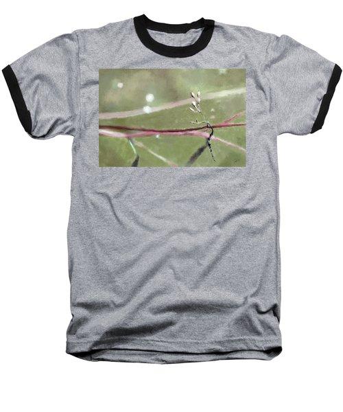 Fading Baseball T-Shirt