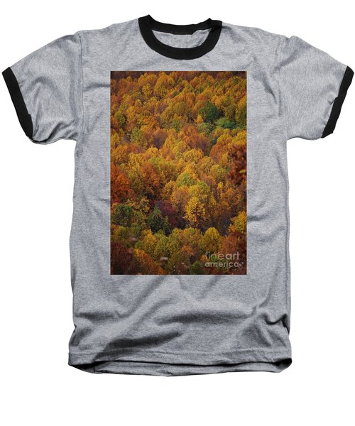 Baseball T-Shirt featuring the photograph Fall Cluster by Eric Liller