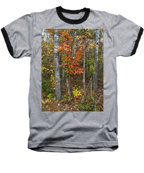 Fall Color At Gladwin 4543 Baseball T-Shirt