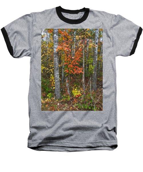 Fall Color At Gladwin 4543 Baseball T-Shirt
