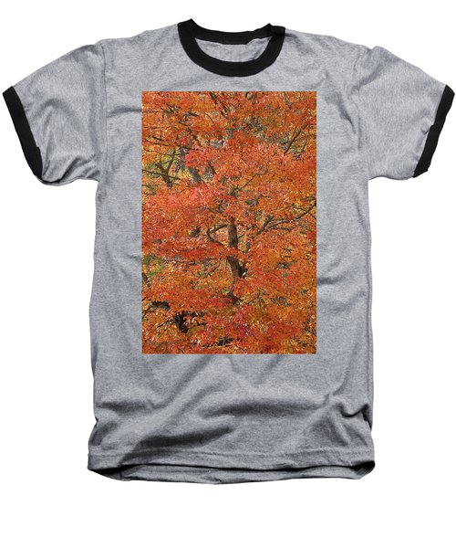 Fall Color Baseball T-Shirt