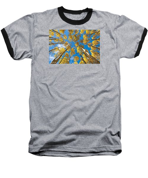 Fall Colored Aspens In The Inner Basin Baseball T-Shirt by Jeff Goulden