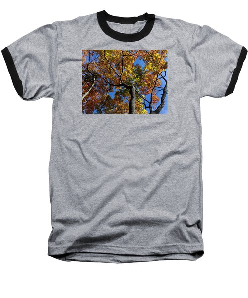 Baseball T-Shirt featuring the photograph Fall Colorful Trees by Haleh Mahbod