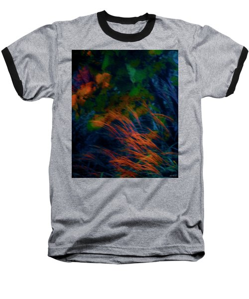 Fall Colors 2 Baseball T-Shirt by Glenn Gemmell