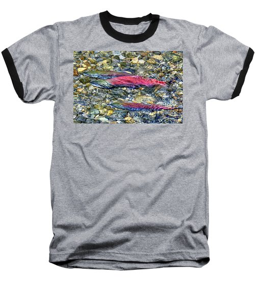 Baseball T-Shirt featuring the photograph Fall Colors by David Lawson