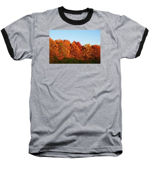 Baseball T-Shirt featuring the photograph Fall Forest by Nikki McInnes