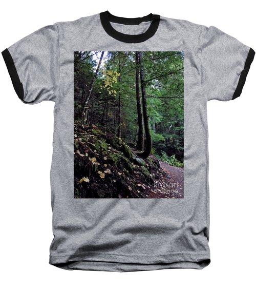 Fall Forest Baseball T-Shirt
