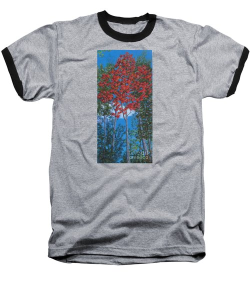 Fall In Asheville Baseball T-Shirt by Anne Marie Brown