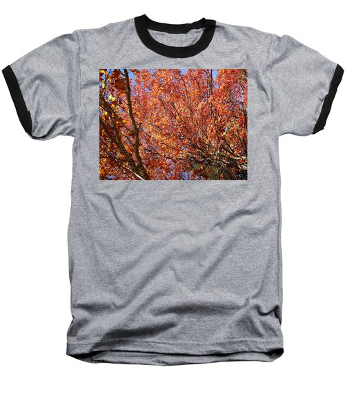 Fall In The Blue Ridge Mountains Baseball T-Shirt by Flavia Westerwelle