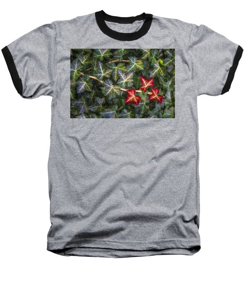 Baseball T-Shirt featuring the photograph Fall Ivy Leaves by Adam Romanowicz