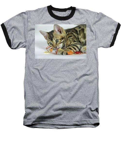 Fall Kitten Baseball T-Shirt by Shoal Hollingsworth