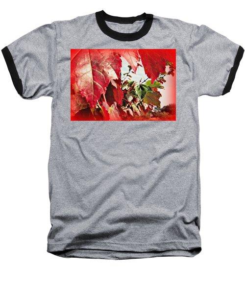 Fall Leaves #10 Baseball T-Shirt