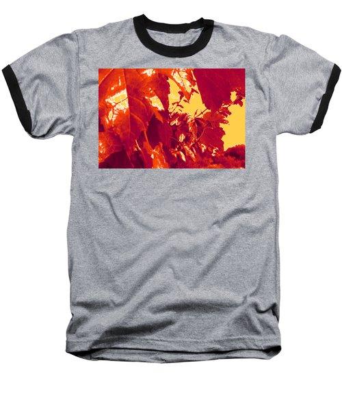 Fall Leaves #13 Baseball T-Shirt
