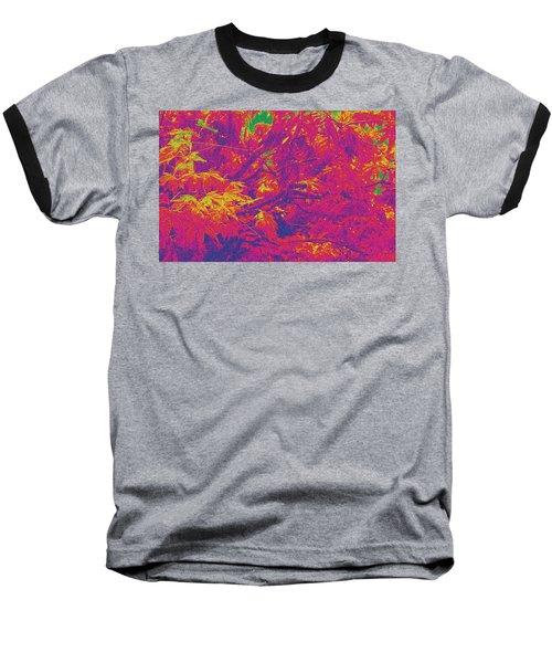 Fall Leaves #14 Baseball T-Shirt