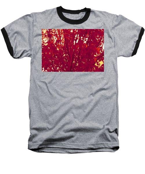 Fall Leaves #2 Baseball T-Shirt