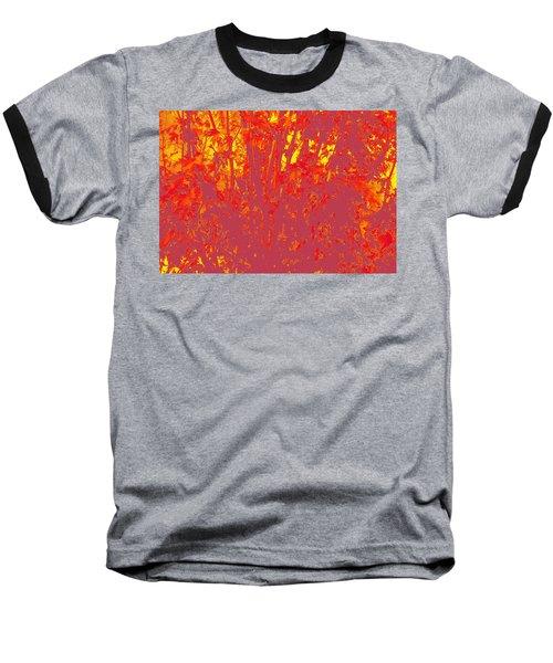 Fall Leaves #4 Baseball T-Shirt