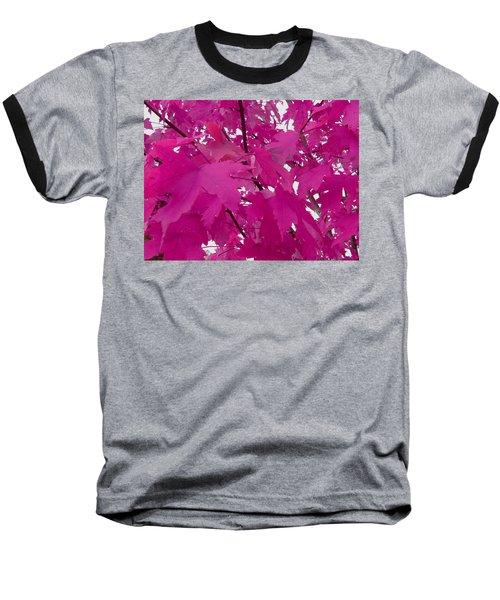 Fall Leaves #5 Baseball T-Shirt