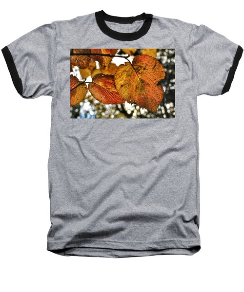 Fall Leaves Baseball T-Shirt