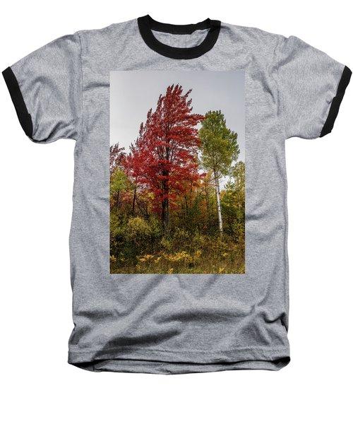 Baseball T-Shirt featuring the photograph Fall Maple by Paul Freidlund