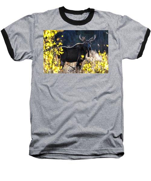 Fall Moose Baseball T-Shirt