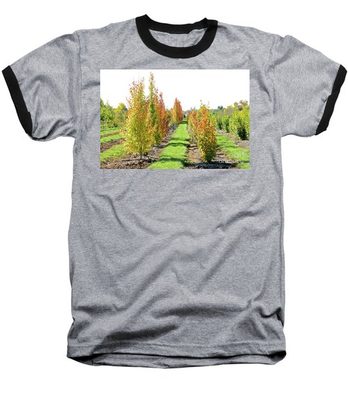 Fall On The Tree Farm Baseball T-Shirt