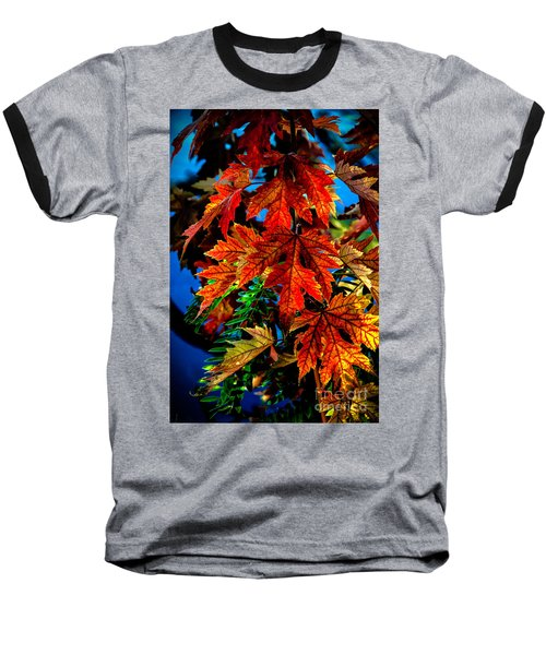 Fall Reds Baseball T-Shirt by Robert Bales