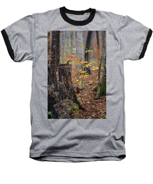 Fall Scene Baseball T-Shirt