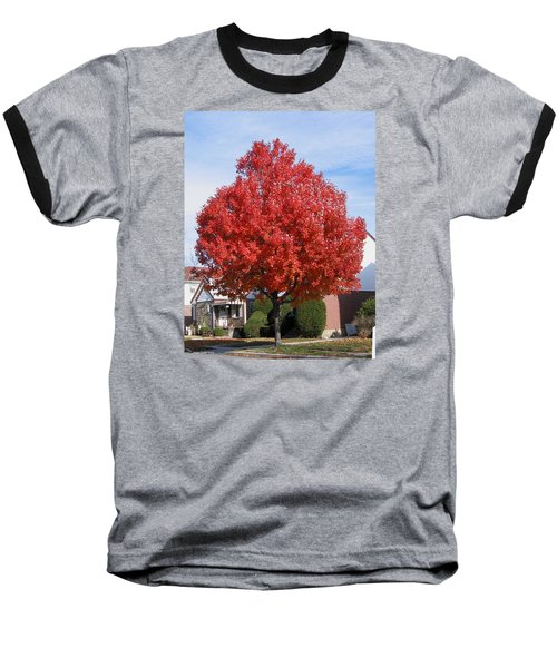 Fall Season Baseball T-Shirt by Suhas Tavkar