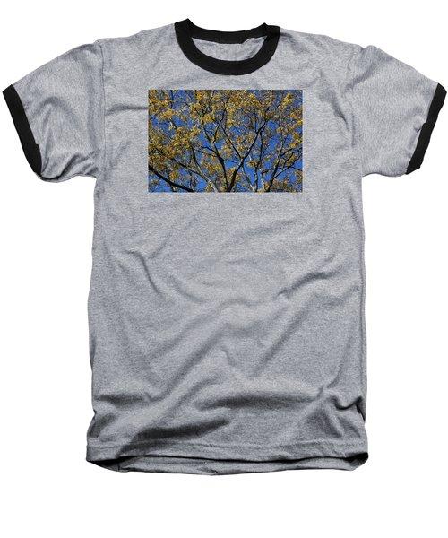 Fall Splendor And Glory Baseball T-Shirt