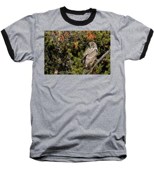 Fall Splendor  Baseball T-Shirt