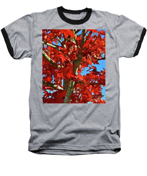 Fall Stars Baseball T-Shirt