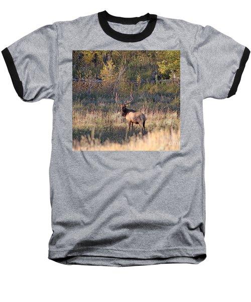 Fall Sunset Satellite Bull Elk Baseball T-Shirt